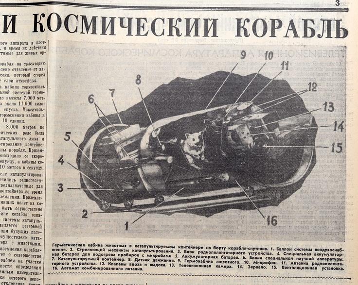 Diagram from Russian newspaper of Strelka and Belka's flight capsule