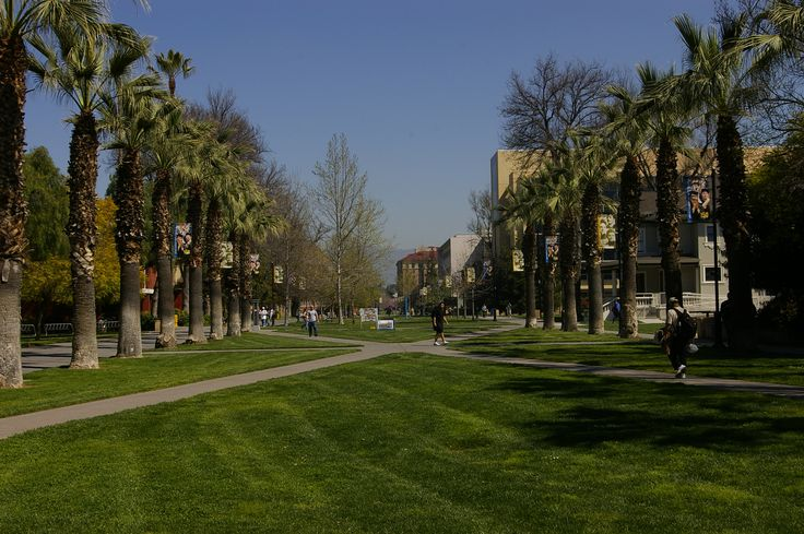 San Jose State University paseo de san carlos - Google Search