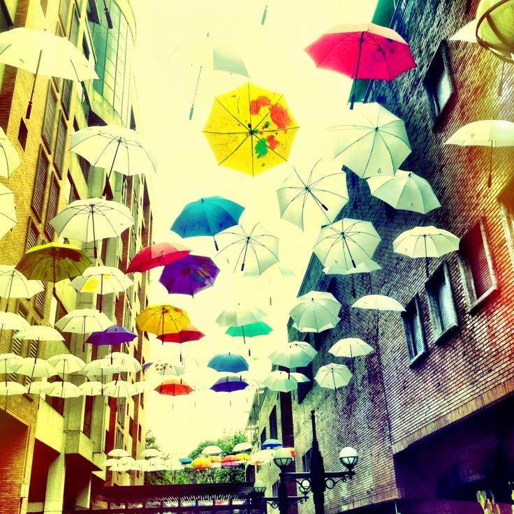 Umbrella's rain bogota col