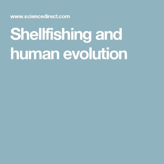Shellfishing and human evolution