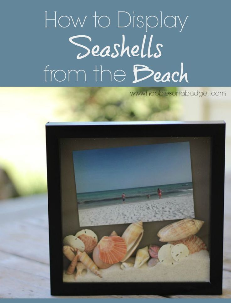 One of the best parts of a beach vacation is searching for the perfect seashells in the ocean. Here's a fun, easy way to display your shells and sand along with your favorite beach picture!