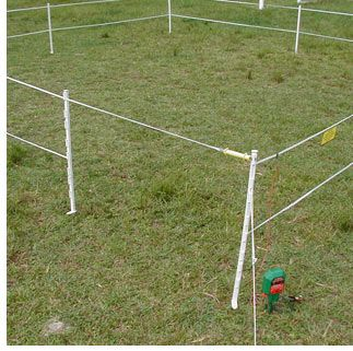 Best 25 Electric Fencing For Horses Ideas On Pinterest