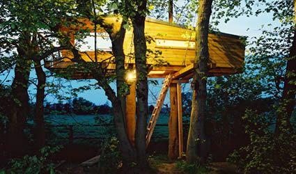 casa_sull_albero_casa_nell_albero_casa_albero_baumraum_casa_alberi_baumraum_case_alberi