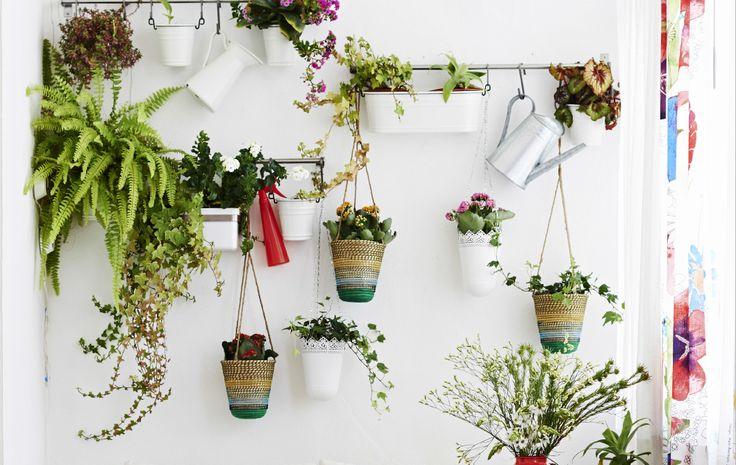 Crea un giardino verticale con vasi sospesi e binari a parete - IKEA