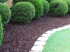 this is EXACTLY! what I am looking for, with the edging and the mulch