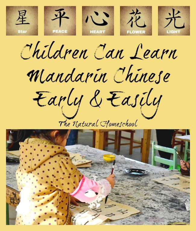 We had so much fun learning more Mandarin Chinese these past few weeks and I can definitely see how my children will continue to learn it because we found an awesome curriculum.