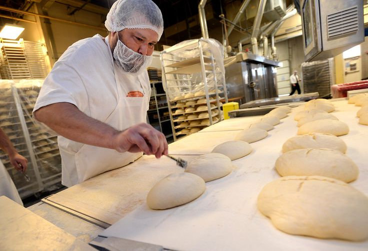 Tony Ybarra of Izzio Artisan Bakery scores loaves of French Boule bread at the company's facilities in Louisville on Friday. For more photos go to www.dailycamera.com Paul Aiken Staff Photographer Oct 28 2016