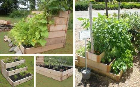 Give Your Garden a New Attractive Look
