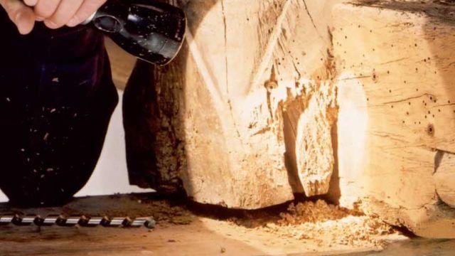 De houtworm is de larve van de houtkever. Die legt eitjes op onbehandeld hout. De larve vreet zich in het hout en maakt kleine gaatjes. Uit die gaatjes valt boormeel en houtstof.