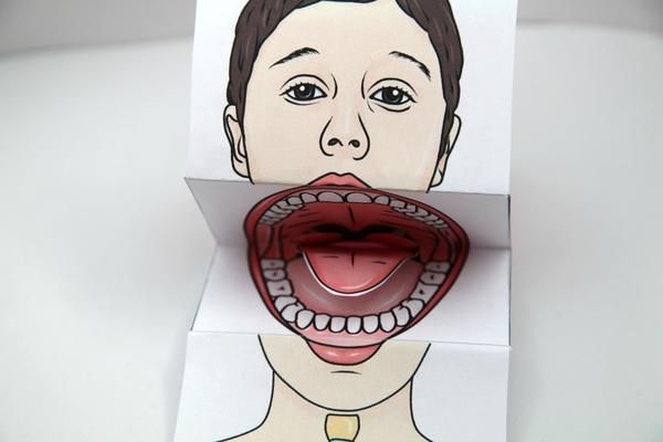 Paper Anatomic Mouth Puppet - It is the perfect tool for teaching the anatomy of the oral mechanism, oral hygiene, and placement of the articulators for producing speech sounds. This mouth paper puppet helps you show and teach children proper tongue placement by opening and closing the mouth and manipulating the tongue. You can show children exactly where their tongue should be to articulate certain sounds correctly.   The best part the student can take it with them!!!!