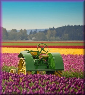 Love all the color with the John Deere tractor.