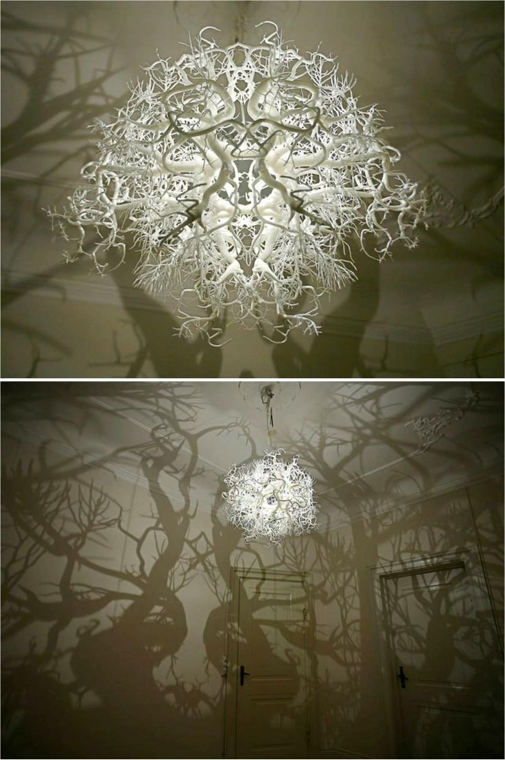 "This remarkable chandelier from Hilden & Diaz projects a 360° shadow of trees and roots onto the walls surrounding it. Titled Forms in Nature the light was partly inspired by the drawings of Ernst Haeckel, the German biologist, naturalist, and philosopher (among other things) who is perhaps most famous for discovering thousands of new animal species and mapping them to a genealogical ""tree of life"". Hilden & Diaz describe that the shadows in their light are actually upside down"