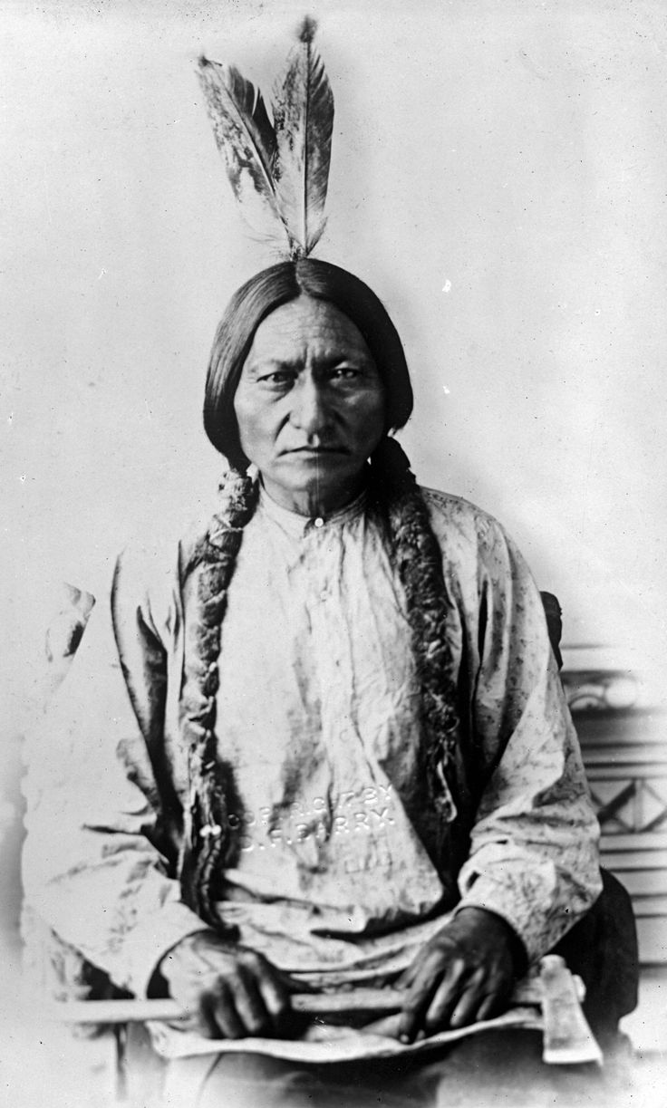 Sitting Bull, Dakota Chief by David Frances Barry