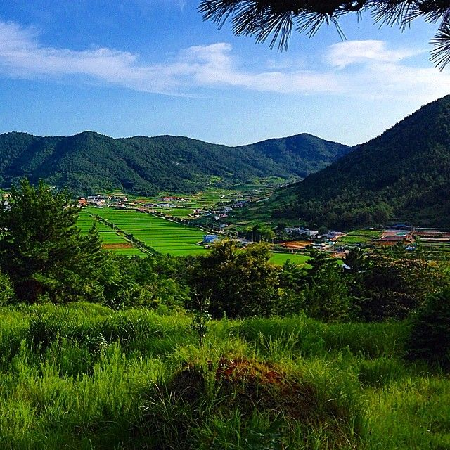 bing Yeosu, South Korea | ... the blog for more deets. #Yeosu #돌산 #무술목 #여수 #대미산