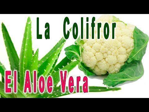 El Aloe vera  y la Coliflor, propiedades y beneficios para nuestra salud
