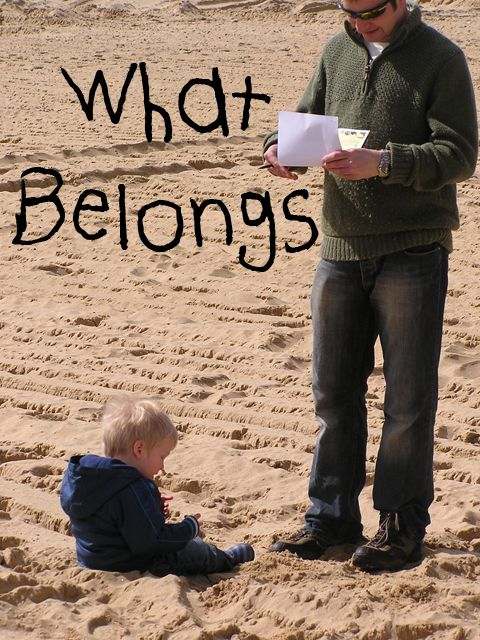 beach survey for toddlers looking at what does and doesn't belong on a beach