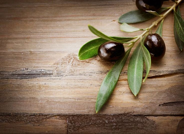 Is Olive Leaf Nature's Answer to Diabetes Treatment? | GreenMedInfo