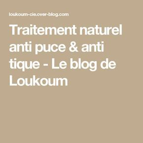 Best 25 anti puce ideas on pinterest anti puce maison for Anti puces maison