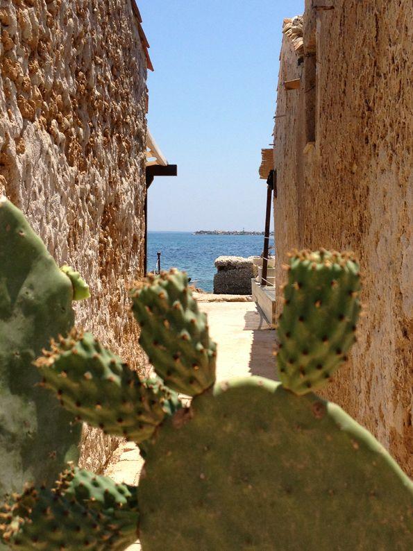 Marzamemi, province of Syracuse , Sicily