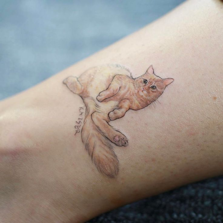 korean small cat tattoo on the ankle