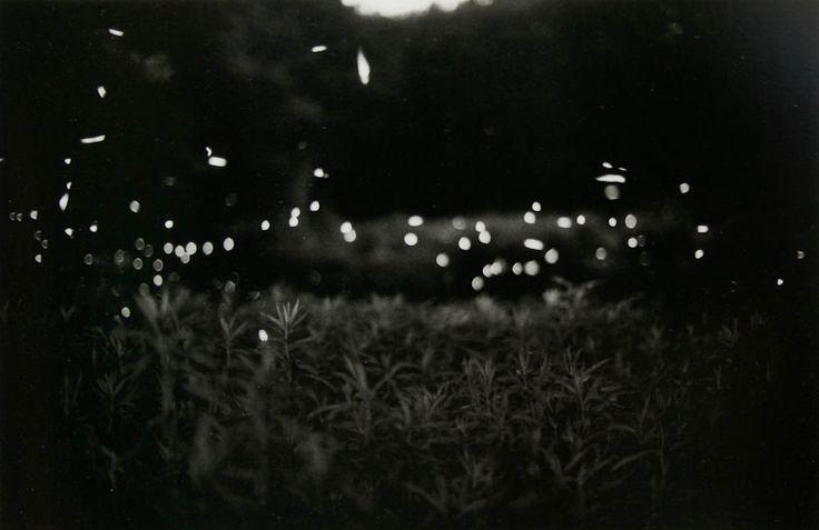 gregory crewdson fireflies