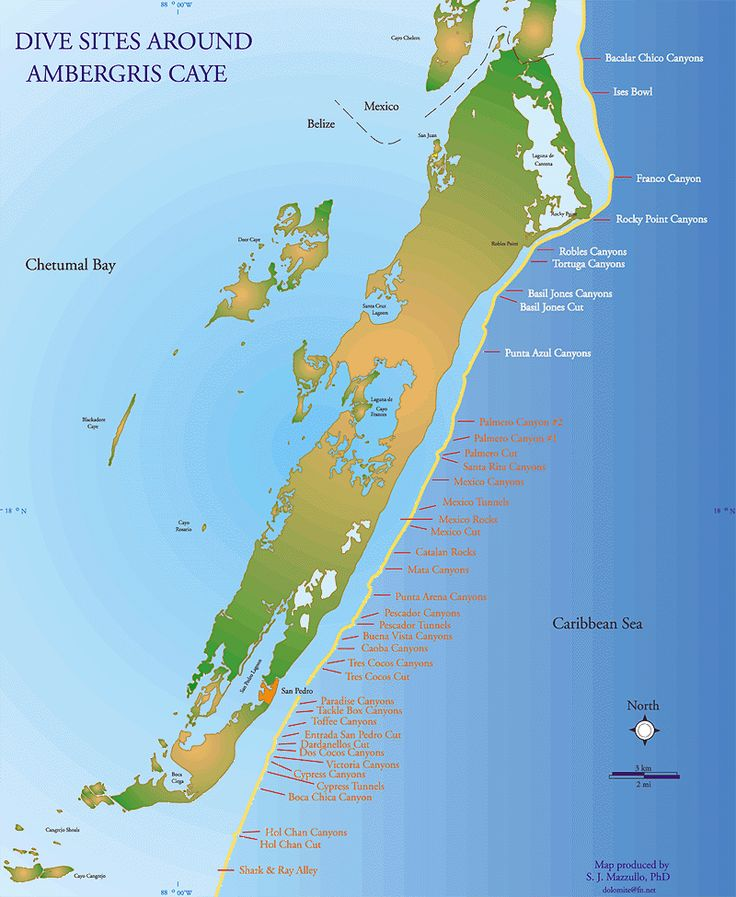 24 best diving at white sands dive shop images on pinterest dive shop ambergris caye and diving - Ambergris dive resort ...