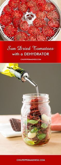Learn how to make the best sun dried tomatoes you've ever tasted - with the help of your dehydrator. All you need is tomatoes, dried herbs, fresh basil, salt and pepper, and olive oil. This is a great way to use up all those tomatoes from your garden. So delicious, so healthy, and so easy to make!