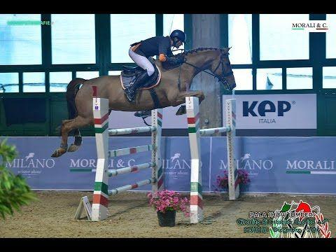 Euro Horse: Lincon Park E.H. - C140 Small Grand Prix MVR Show Jumpers - ...