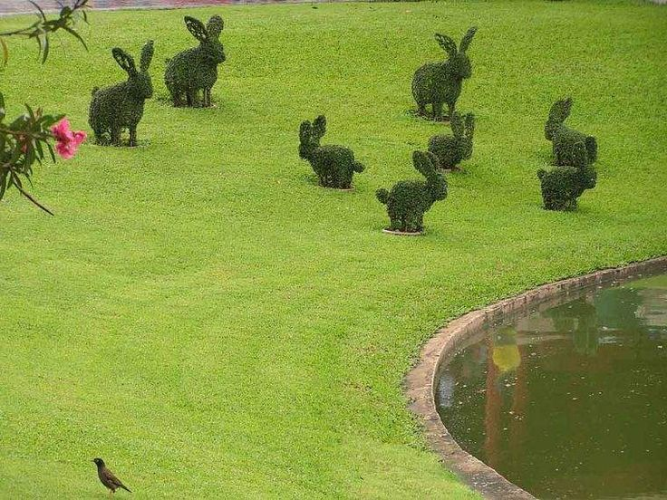 17 meilleures id es propos de jardin de topiaires sur for Creation jardin anglais