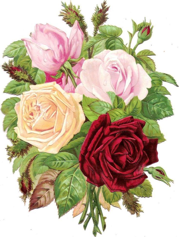 Oblaten Glanzbild scrap die cut chromo Rose  XL 24cm fleur flower Strauß bouquet