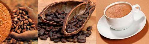 Какао без сахара против старения