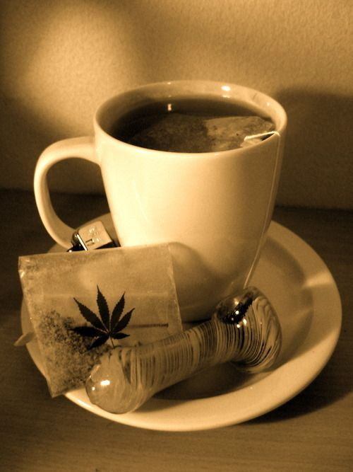 31 best marijuana books images on pinterest knob ceramic art and ingredients chai tea base can be found at walmart 1 cup soy milk 2 chai tea bags cup sugar 1 can whipped cream 3 cups wat fandeluxe Images