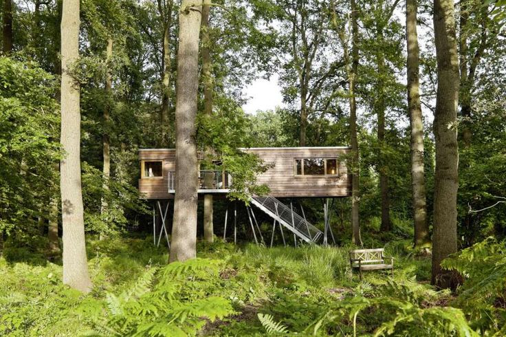The Baumgeflüster treehouse resort