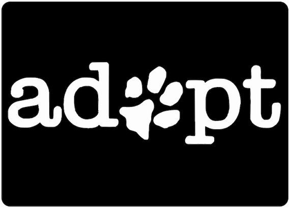 Adopt a Dog Decal Paw Print Just for the Dog Lover Dog Sticker Car Sticker on Etsy, $3.99
