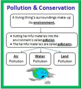 Essay natural resources environment
