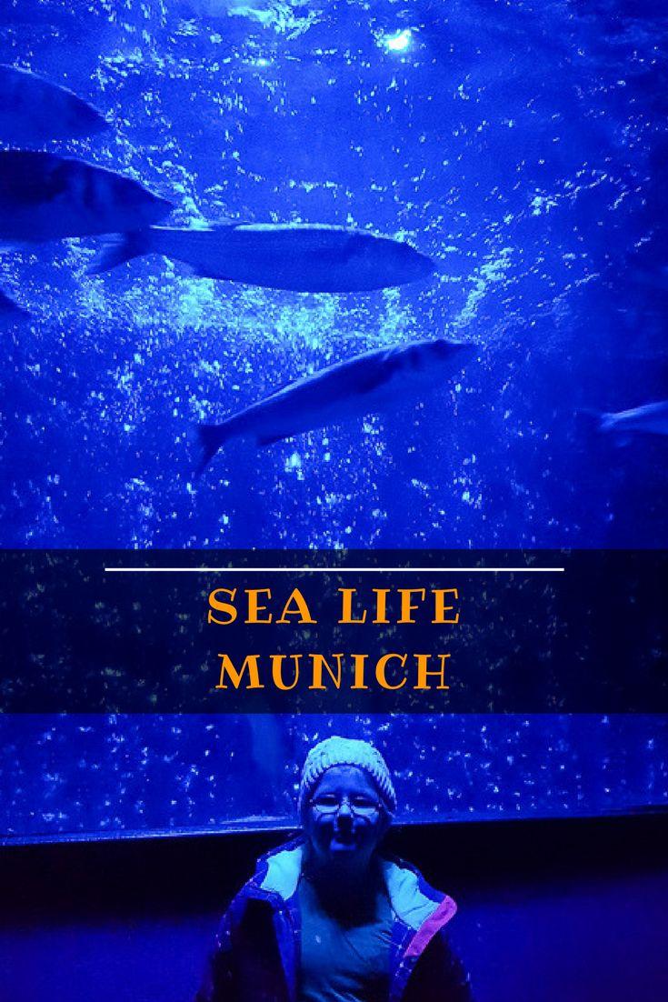Sea Life, Sea Life aquarium Munich, Sea Life Munich Olympic Park, Munich with kids, Munich tours, visiting Munich, Munich, Bavaria, Germany
