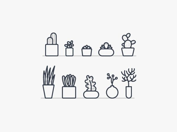 Little cactus and succulents