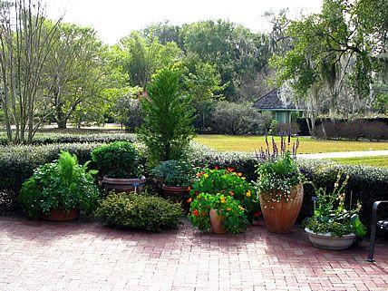Gardening container a collection of gardening ideas to for Perennial container garden designs