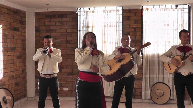 """mariachis las mañanitas Cancion para la Mamá (es mi Madre) mariachis las mañanitas Cancion para la Mamá (es mi Madre)     Asombre con una Serenata a su Ser Apreciado.  Complete 5 Serenatas y RECLAME 1 GRATIS.  Obtenga Mexicanito Absolutamente Gratis por Agendar Mariachis en Bogotá     Serenatas en Bogotá para: Mama, Papa, hijo, hija, esposa, esposo, abuelo, abuelita, novio, novia, amigo, amiga, futuro esposo, futura esposa.      """"No Exponga su Reunión por Buscar lo más Rebajado""""     Con…"""