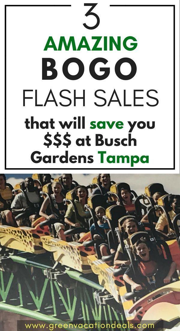 caa9f11264b2adb57cfe20456b421c8b - Buy One Get One Free Busch Gardens Tampa