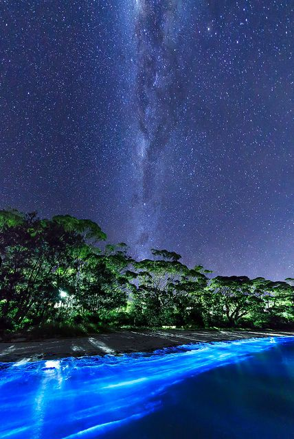 Two amazing sources of light - The Milkey Way and bio-luminescent plankton - Vincentia - New South Wales - Australia
