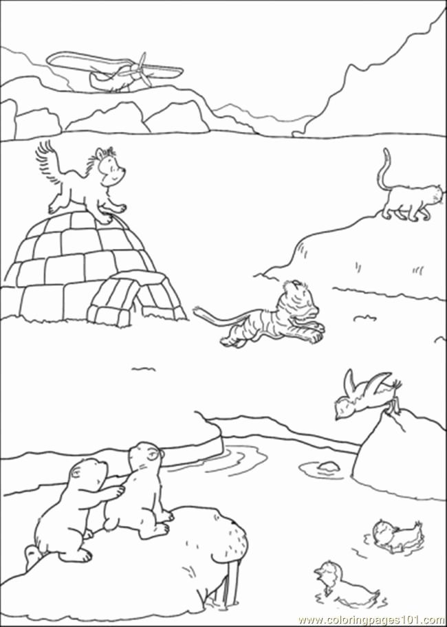 Arctic Animals Colouring Pages Arctic Animals Animal Coloring