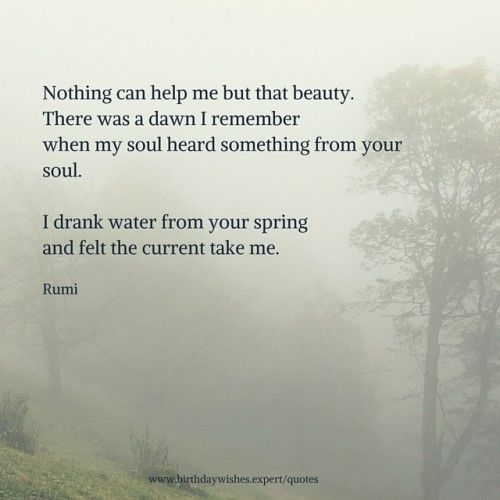 Nothing can help me but that beauty.There was a dawn I rememberwhen my soul heard something from your soul.I drank water from your springand felt the current take me.