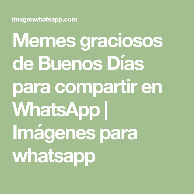 Memes graciosos de Buenos Días para compartir en WhatsApp | Imágenes para whatsapp