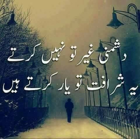 quote of the day in urdu