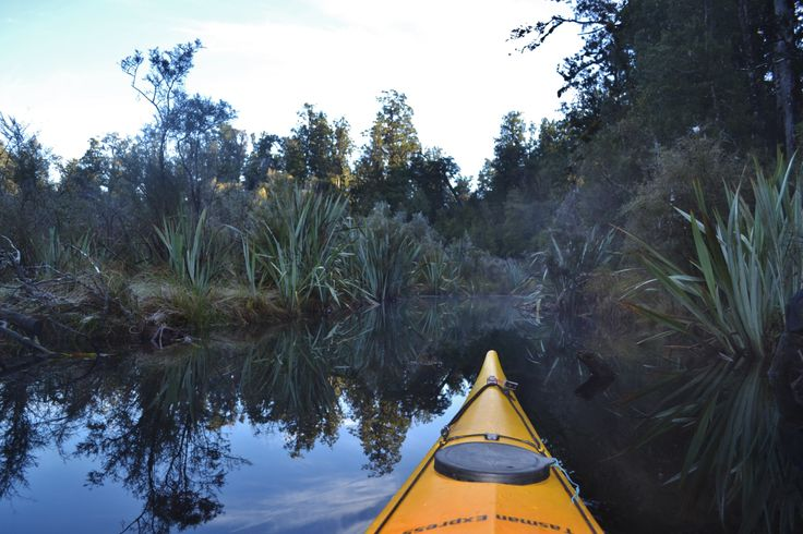 Frosty paddling in the Rainforest, West Coast NZ