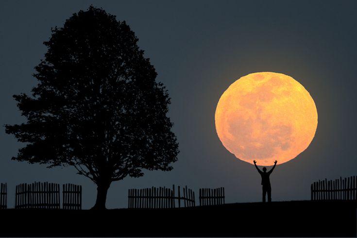 The Big Moon by Carlos Gotay