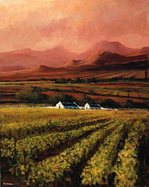 Oil Painting - Cape Vineyards by Mauro Chiarla