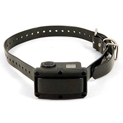Best Bark Collar Reviews – Top 3 Rated for Mar. 2017