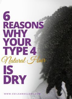 6 Reasons Why Your Type 4 Natural Hair is Dry